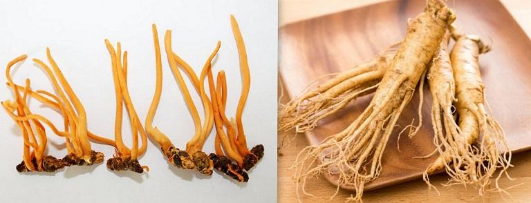 Đông trùng hạ thảo và sâm mang nhiều lợi ích đối với sức khỏe