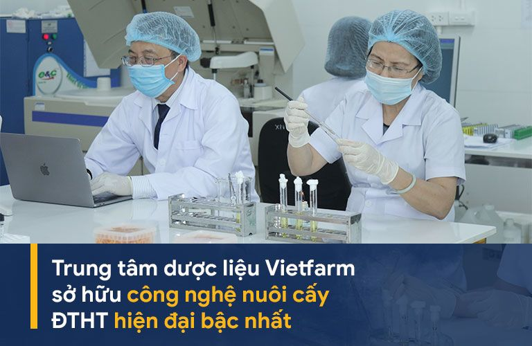 Trung tâm Dược liệu Vietfarm sở hữu công nghệ nuôi cấy hiện đại